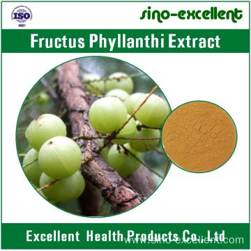 100% natural Fructus phyllanthi extract